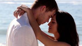 Спокойные пары обнимая совместно сток-видео