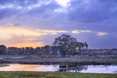 Спокойные фены с красочным небом и деревья отразили в воде на заходе солнца, Turnhout, Бельгии Стоковое фото RF