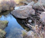 Спокойный бассейн Стоковая Фотография RF