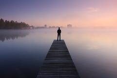 Спокойный взгляд Стоковые Фото