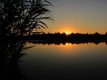 Спокойный заход солнца на озере с тросточкой Стоковая Фотография