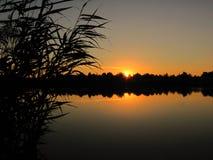 Спокойный заход солнца на озере с тросточкой Стоковое Изображение RF