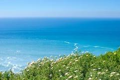 Спокойный ландшафт океана на солнечный день Стоковые Фото