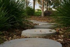 Спокойный мирный каменный путь стоковое фото
