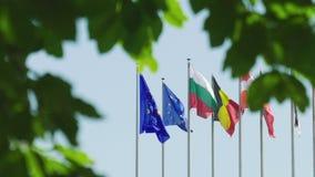 Спокойный мирный флаг Европейского союза взгляда рядом с другими членами Eu видеоматериал