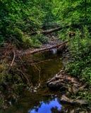 Спокойный поток и мост лета Стоковые Фото