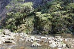 Спокойный поток sanqingshan держателя, самана rgb стоковые изображения