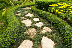 Спокойный сад Стоковое Изображение RF