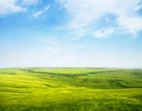 Спокойный холмистый лужок стоковое фото rf