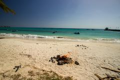 Спокойствие на пляже Oistins, Барбадос Стоковое фото RF