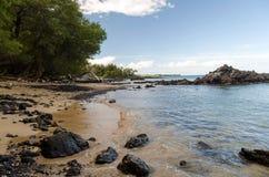 Спокойствие пляжа Waialea стоковое фото rf