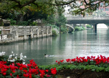 спокойствие riverwalk стоковое фото rf