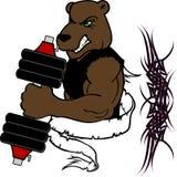 Спортзал тренировки веса фитнеса шаржа медведя мышцы Стоковые Фото