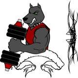 Спортзал тренировки веса фитнеса шаржа собаки мышцы Стоковые Изображения