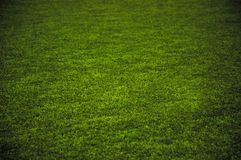 Спортивная площадка травы стоковая фотография