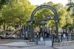 Спортивная площадка головастика в общем Бостона стоковое изображение rf