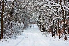 Jogging зимы Стоковые Фото