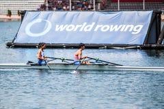 Спортсмены Тайбэя на rowing конкуренции чашки мира гребя Стоковое фото RF