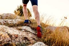 Спортсмен бегуна людей ног Стоковое Фото