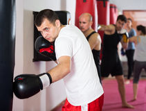 Спортсмен в зале бокса практикуя кладущ пунши в коробку с boxi Стоковые Фотографии RF
