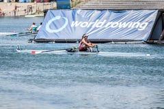 Спортсмен Катара на rowing конкуренции чашки мира гребя Стоковое Фото