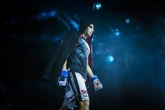 Спортсмен крупного плана смешал бойца боевых искусств во время представления перед боем Стоковые Изображения RF