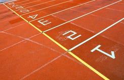 спорты поля Стоковая Фотография