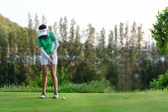 Спорт здоровый Фокус женщины игрока в гольф азиатский sporty кладя шар для игры в гольф на зеленый гольф на день отпуска стоковая фотография rf