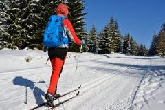 Спорт зимы в горе в Восточной Европе, Польше Стоковое Изображение