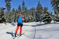 Спорт зимы в горе в Восточной Европе, Польше Стоковые Изображения