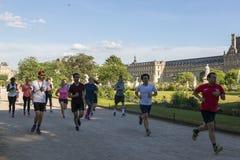 Спорт, который побежали в саде Тюильри в Париже Стоковые Изображения RF
