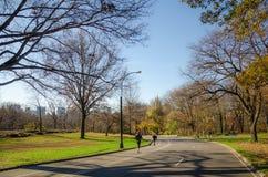 Спорт на Central Park Нью-Йорке стоковое изображение rf