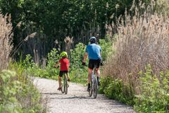 Спорт отца и сына практикуя велосипедом стоковые фотографии rf