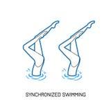Спорт Синхронизированное заплывание Стоковые Фото