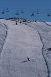 спорт снежка воссоздания Стоковая Фотография RF