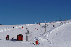 спорт снежка воссоздания Стоковое Фото