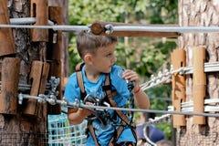 Спорт ягнятся в мальчике леса играя весьма движение в большой возвышенности стоковые фотографии rf