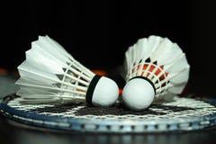 спорт shuttlecocks ракетки badminton близкий вверх Стоковые Фото