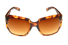 способ backgro коричневый изолировал солнечные очки белые Стоковые Фото