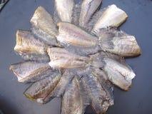 Сползенная рыба сухая, самая верхняя тайская еда Стоковые Изображения RF