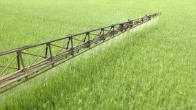 Спрейер распыляет молодую пшеницу акции видеоматериалы
