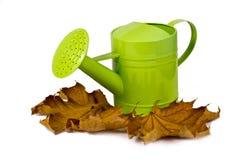 спринклер листва Стоковые Изображения RF