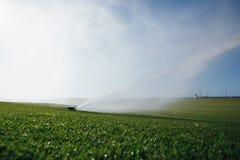Спринклер лужайки поля для гольфа автоматический Стоковые Фотографии RF