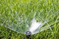 Спринклер сада Стоковые Изображения RF