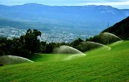 Спринклеры воды на луге фермы Стоковые Изображения