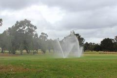 Спринклеры в парке стоковое фото rf