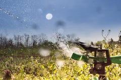 Спринклер весной Стоковые Фотографии RF