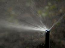 Поливать спринклера воды Стоковые Изображения