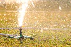 Спринклер лужайки Стоковые Изображения RF
