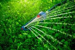 Спринклер лужайки spaying вода над зеленой травой Стоковое Изображение
